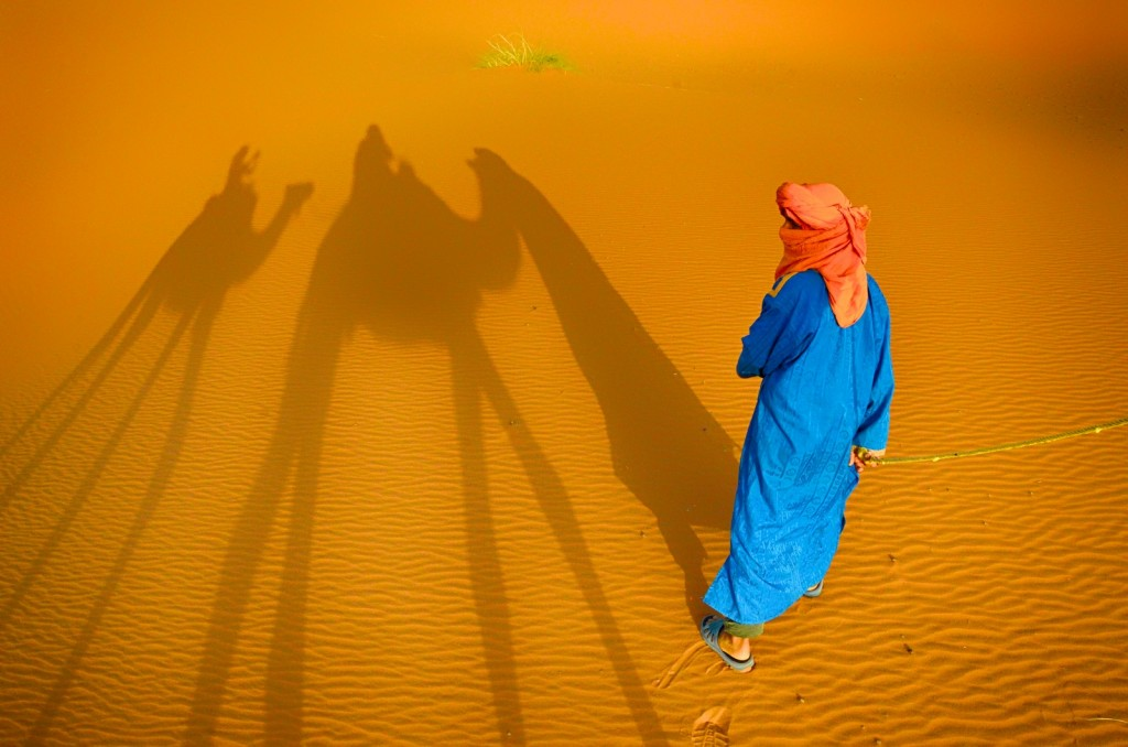Camel shadows in the Moroccan Sahara Desert