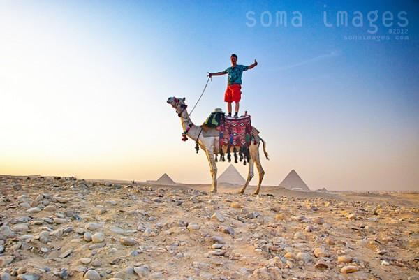 jason - camel